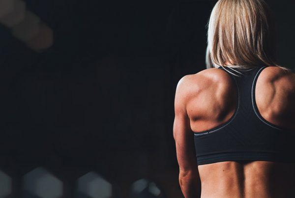 health-fitness-gym-wordpress-plugins-4102755-8381012-jpg
