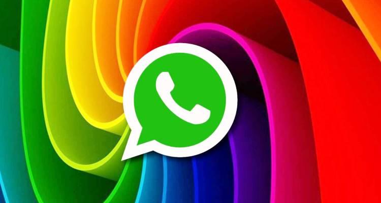 Gay whatsapp WhatsApp Child