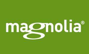 magnolia_tools_to_create_pc3a1ginas_web-300x182-9417654