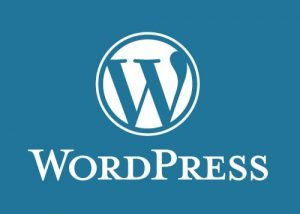 wordpress_cms-300x214-9548514